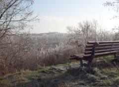 Ausblick vom Schlehenberg