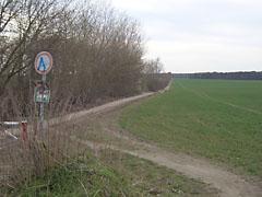 Feld bei Mahlow