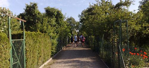 Laufen im Claire-Waldoff-Weg
