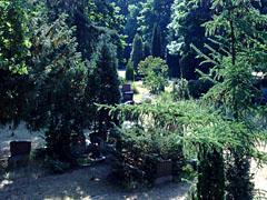 Friedhof an der Königin-Elisabeth-Straße