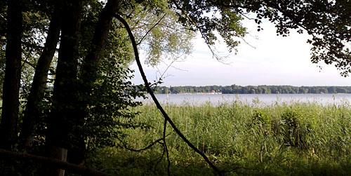 Laufen am Wannsee