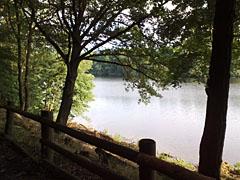 Laufen am Wasser: Blick auf den Wannsee