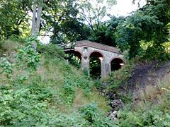 Verfallene Brücke im Wald