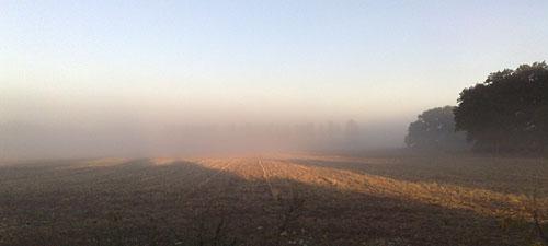 Nebel über den Feldern beim Lauf nach Großbeeren