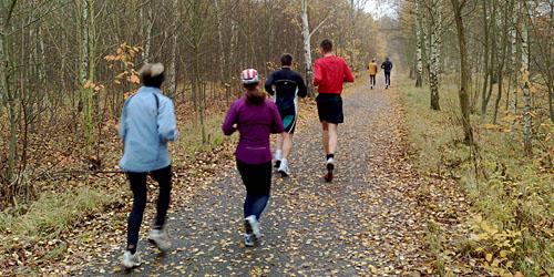 Läufer im Herbst auf dem Mauerweg