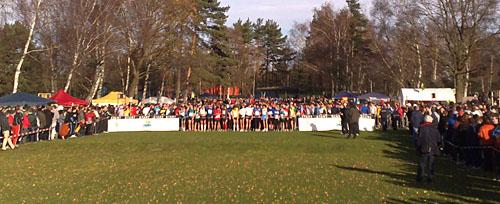 Startfeld bei der 16. Kondius Marathon-Staffel