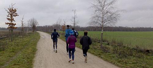 Läufer auf einem Weg zwischen den Feldern