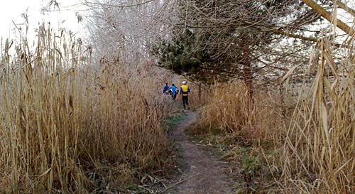 Laufen am Mahlower Seegraben