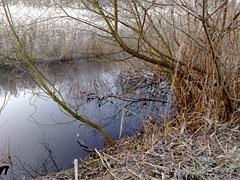 Mahlower Seegraben