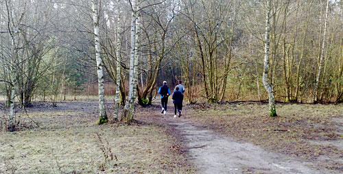 Läufer vor einem Wald