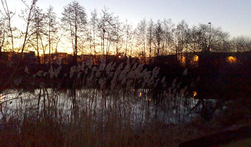 See bei Sonnenaufgang