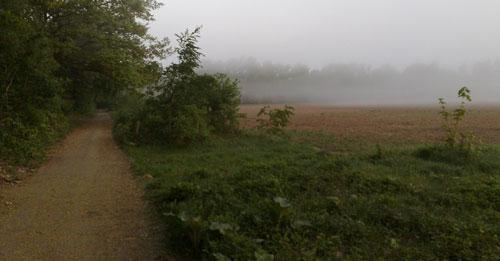Acker im Nebel
