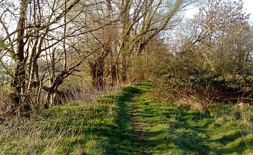 Weg in der Feldmark
