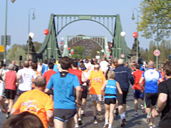 Läufer beim Drittelmarathon in Potsdam