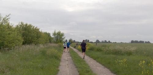 Läufer zwischen Feldern