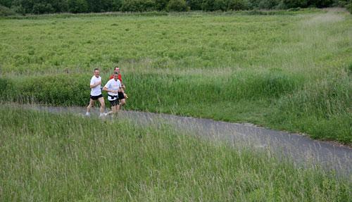 Laufen durch die Wiesen