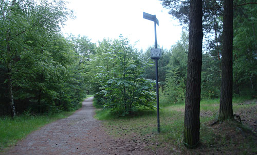 Mauerweg durch den Wald