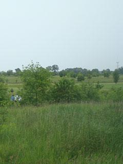 Laufen vorbei am Golfplatz