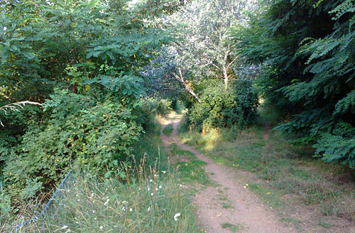 Bergauf und bergab laufen im Freizeitpark Marienfelde