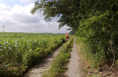 Laufen zwischen den Feldern
