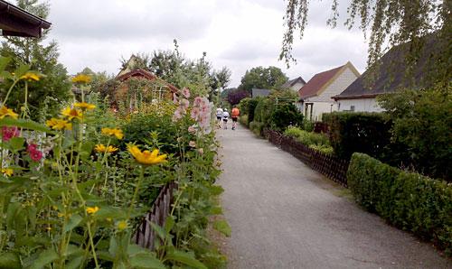 Läufer im Kleingartengebiet