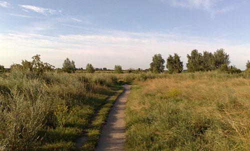 Landschaft mit Trampelpfad