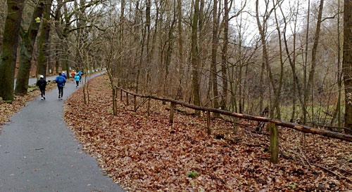 Läufer auf der Havelchaussee