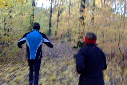Herbstlauf durch den Wald