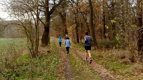 Läufer im Wald