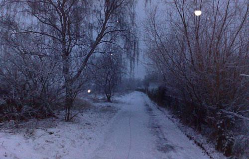 Verschneiter Weg neben Kleingärten