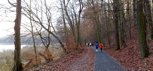 Läufer-Gruppe am Wannsee
