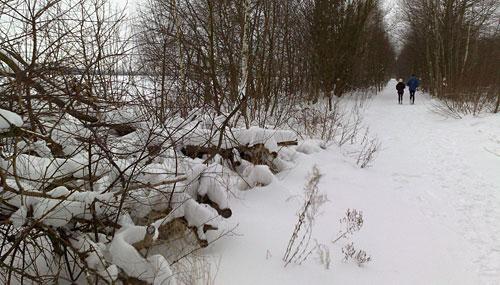 Mauerweg im Schnee