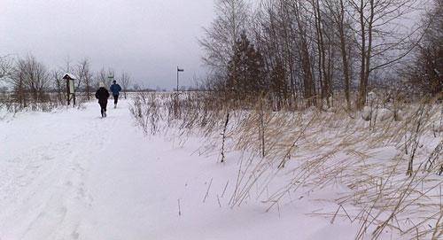 Schnee-Läufer