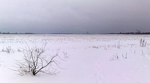 Feld im Schnee
