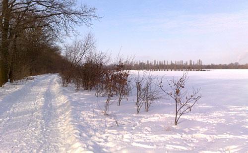 Schnee-Landschaft
