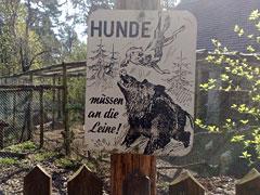Schild mit Warnung vor Wildschweinen