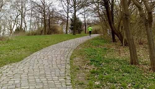 Läufer auf dem Anstieg zum Schlehenberg