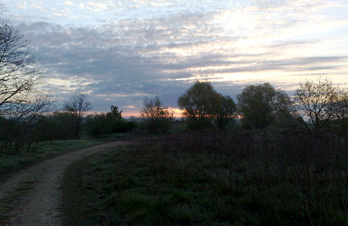 Parkweg mit Sonnenaufgang