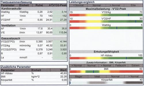 Diagramm Leistungsdiagnostik VO2 max