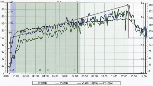 Grafik Leistungsdiagnostik