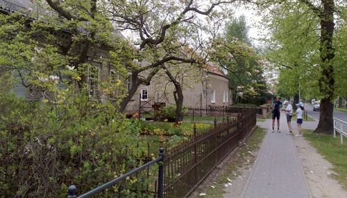 Altres Haus mit Magnolie