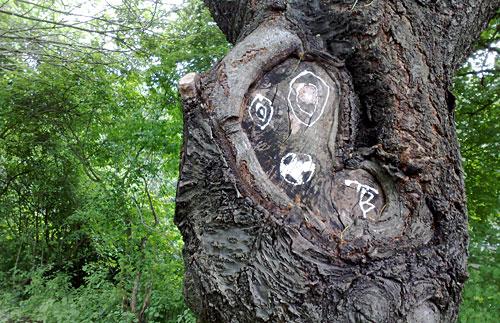 Zeichnung mit Fußball auf Baum