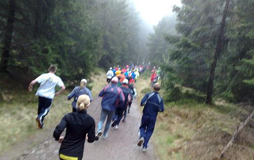 Läufer im Wald bei Nebel
