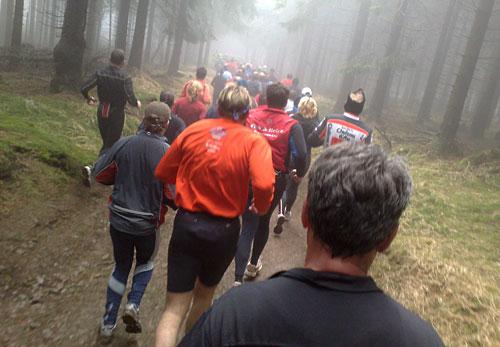 Läufer beim Rennsteiglauf-Halbmarathon