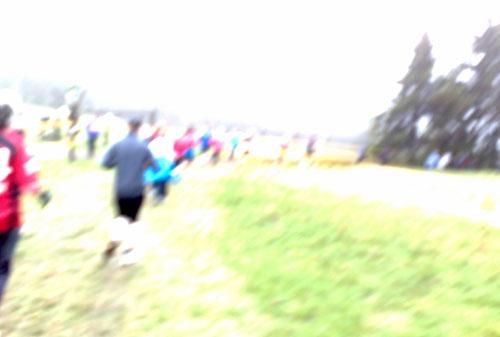Läufer auf Wiese