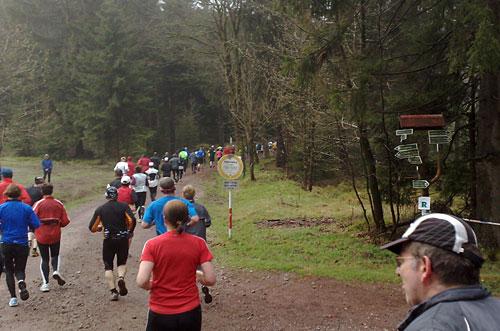 Läufer biegen in Wald ab