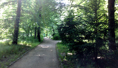 Weg im Gutspark Marienfelde