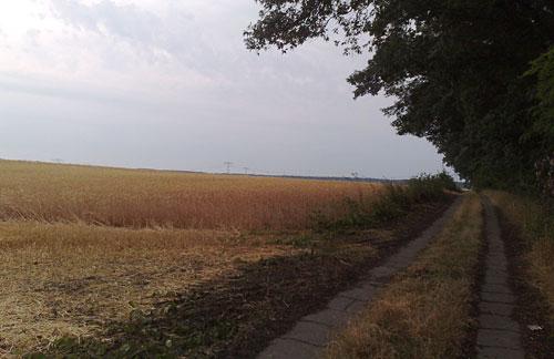 Weg neben einem Feld
