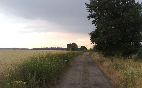 Weg mit Gewitterwolken am Horizont