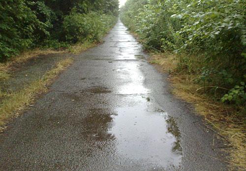 Weg mit Pfützen bei Regen